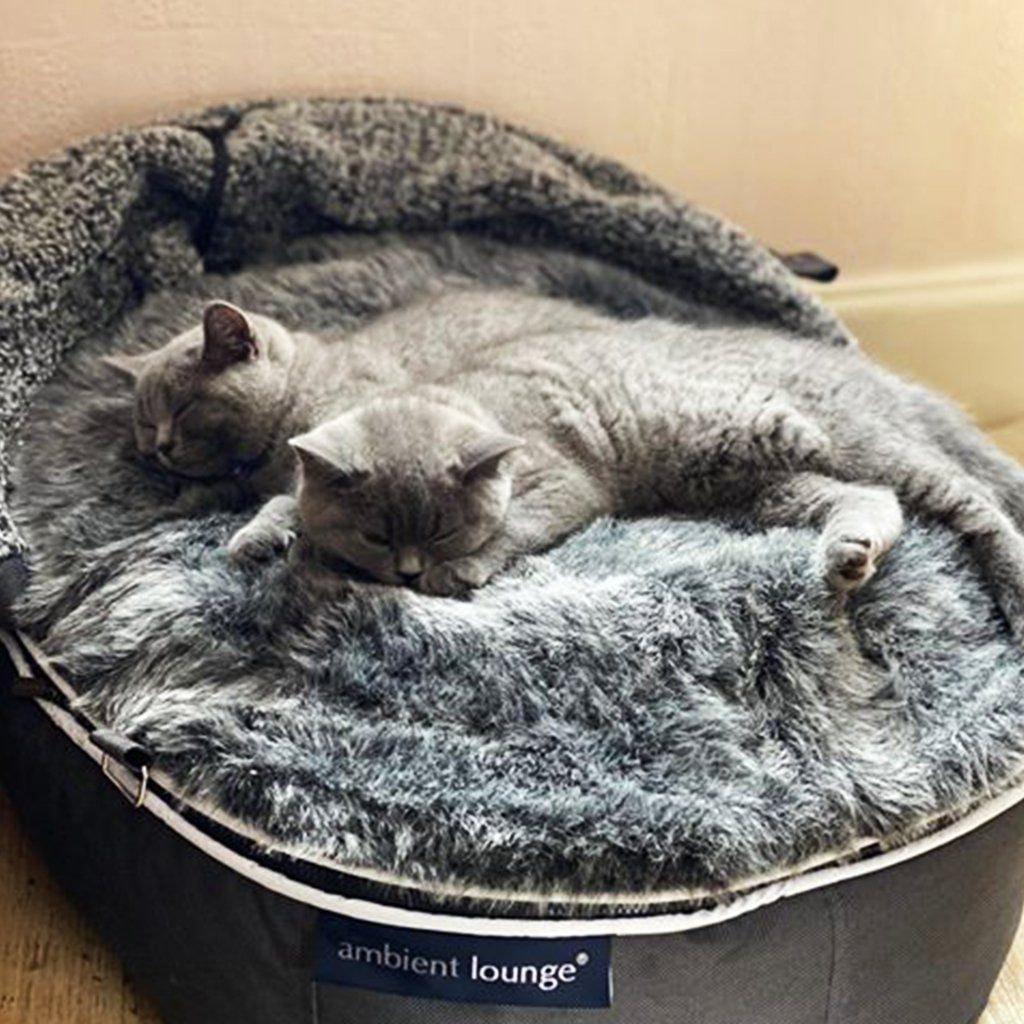ambient lounge hoody kattenkussen indoor