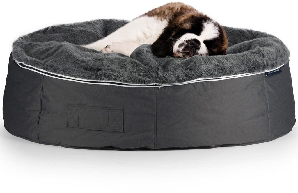 ambient lounge pet bed indooroutdoor xxl