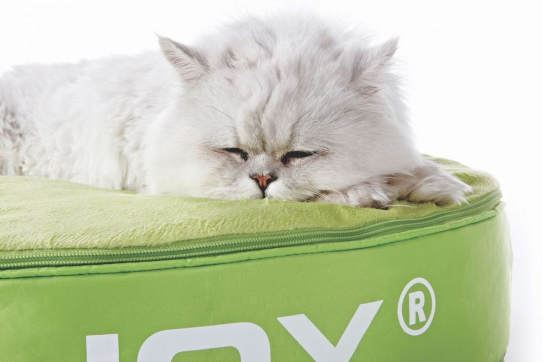 sitjoy cat bed lime